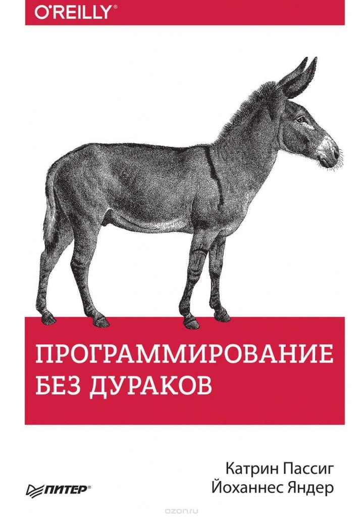 «Программирование без дураков» – Катрин Пассиг, Йоханнес Яндер