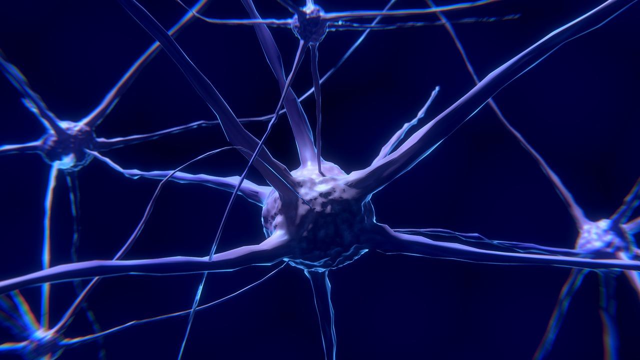 Нейросети и глубокое обучение