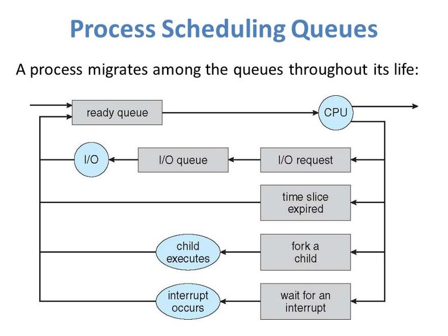 ОС поддерживает все блоки управления процессом (PCB) в очередях планирования процесса