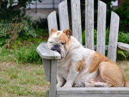 Что вызывает усталость