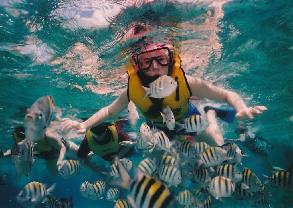 Python - как плавание с маской