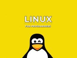 Лучший дистрибутив линукс для программистов