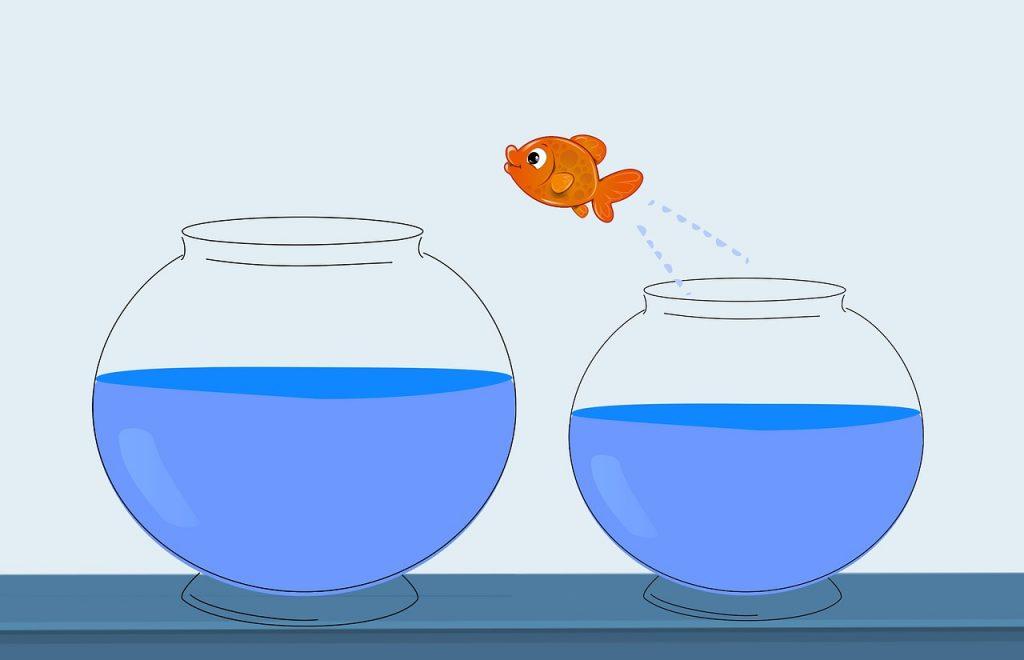 Как проявить лидерские качества, чтобы сделать следующий шаг в карьере