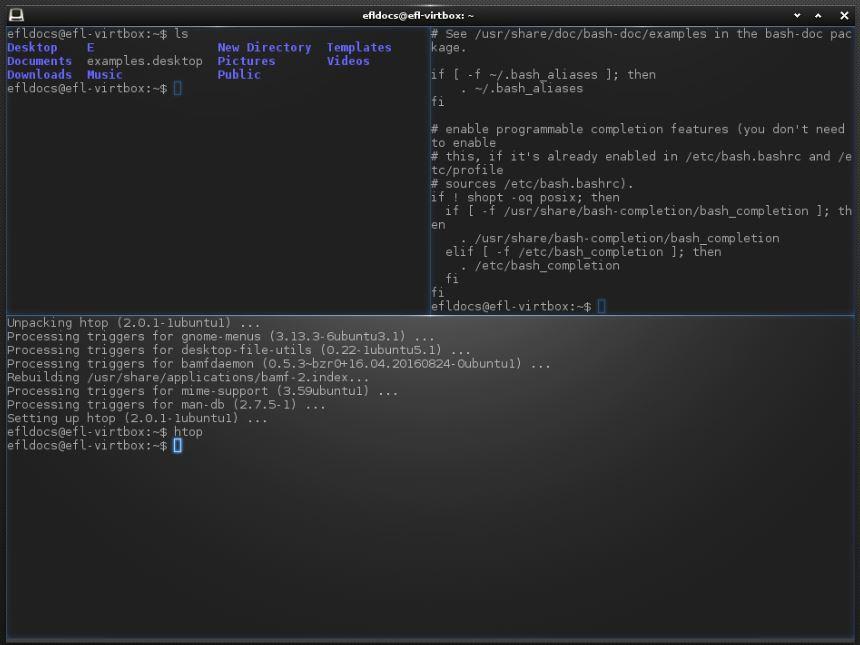 Эмулятор терминала Terminology