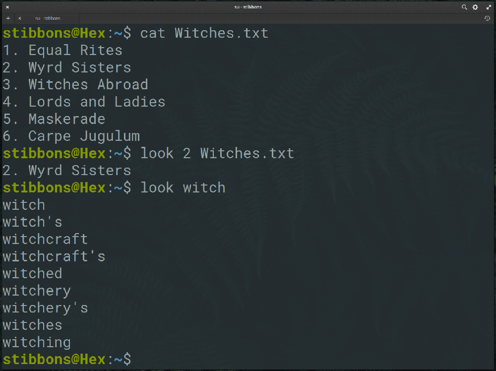 look linux command